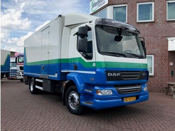 DAF LF 55-220 EURO 5 BOX WITH TAILLIFT - Koffer LKW